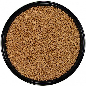 wheat in bulk